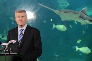 aquarium australienne