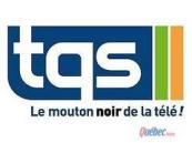 TQS logo